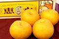 恵水梨(けいすいなし)販売 茨城県オリジナル品種の和梨を通販で取寄せ。約5kg 約5玉〜約9玉
