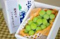 敬老の日シャインマスカット葡萄ギフト通販 おじいちゃん・おばあちゃんに果物プレゼント。1房