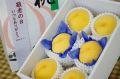 敬老の日黄桃ギフト通販 おじいちゃん・おばあちゃんに果物プレゼント。小箱 6玉 山形・他産地