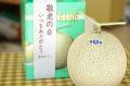 敬老の日マスクメロンギフト通販 おじいちゃん・おばあちゃんに果物プレゼント。1玉入 山形産