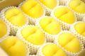 黄桃お取り寄せ販売。通販で黄金桃・他品種の黄色いモモを取寄。フルーツギフトに 約5k 約13玉〜約18玉 山形・他産地