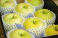 トキりんご通信販売 奇跡の出会いで誕生した青りんごを販売取寄。中箱 約7玉~約9玉 青森・長野・他産地