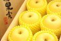 桐箱入 大玉6玉 最高級 糖度約17度 青森はるかりんご販売 こだわり篤農家 御歳暮林檎