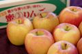 こみつりんご販売 蜜入お歳暮林檎を通販。品種名 高徳こうとく 青森県産 約2kg 約6玉〜約12玉