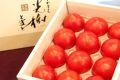 光樹とまと販売 こうじゅトマト佐賀県産を通販お取り寄せ 等級「秀品」約10玉~約16玉