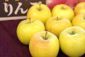 こうこうりんご 蜜入林檎で希少な品種 糖度約15度 5kg 約12玉~約18玉 青森・他産地の通信販売 時間が経つと蜜は消えていきます