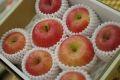 高徳りんご(こうとく林檎)販売 蜜たっぷりの林檎を通販取寄。約3kg 約12玉〜約16玉 山形・他産地