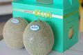 タカミメロン通信販売 熊本産。熊本貴味メロンを販売取寄。果物ギフトに 2玉