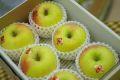 ぐんま名月りんご通販 お歳暮林檎に。隠れた銘品種りんごを販売取寄。小箱 約5玉〜約6玉 群馬・長野・他産地