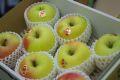 ぐんま名月りんご通信販売 お歳暮林檎に。隠れた銘品種りんごを販売取寄。中箱 約7玉~約9玉 群馬・長野・他産地