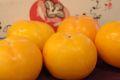 みしらず柿販売 会津身不知柿を通販お取り寄せ 福島県 小箱 約8玉 個選及びJA