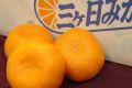 JA三ヶ日みかん通販 お歳暮静岡県みかん販売 早生・青島 約4・5kg S~2L 糖度11度以上 秀品