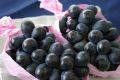 ナガノパープル葡萄通信販売 長野県産。種なし皮ごと食べられるぶどう販売取寄 1房