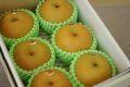 南水梨通販 糖度約13度の和梨を販売取寄。小箱 約5玉~約6玉 長野・他産地