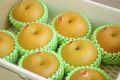 南水梨通信販売 糖度約13度の和梨を販売取寄。中箱 約7玉~約9玉 長野・他産地