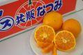 南津海(なつみ)通販 初夏に味わえる春みかんを販売取寄。約2kg 約20玉~約25玉 和歌山・他産地