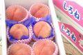 新潟桃通販 一糖賞・糖鮮確実。糖度13度のももを販売取寄。 小箱 6玉