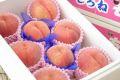 新潟桃通信販売 一糖賞・糖鮮確実。糖度13度のももを販売取寄。 中箱 約7玉~約9玉