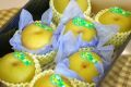 新潟幸水通信販売  しろね地区糖度約13度の和梨を通販で取寄。一糖賞・糖鮮確実 中箱 約7玉~9玉 新潟産