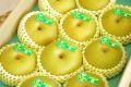 新潟幸水取寄販売  しろね地区糖度約13度の和梨を通販で果物ギフトに。一糖賞・糖鮮確実  約5kg 10玉~16玉 新潟産