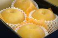 にっこり梨 等級「自信作」通販 糖度13度以上 栃木オリジナルの大玉系和梨を販売取寄。約3kg 約3玉〜約5玉 栃木産