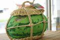 入善ジャンボ西瓜通販 富山県黒部俵スイカを販売。日本一の大きさをお中元に 1玉 約14kg~約20kg