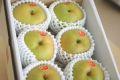 新甘泉(しんかんせん)通販 鳥取のブランド和梨を販売取寄。小箱 約5玉~約6玉 鳥取産