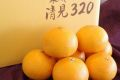 木成り完熟清見オレンジ通販 下津クラウン果樹協同組合の清見320を販売取り寄せ。約5k L~3L