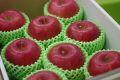 シナノスイートりんご通信販売 長野生まれのシナノりんごを販売取寄。中箱 約7玉〜約9玉 山形・長野産