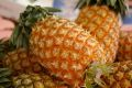 沖縄スナックパイン通販 ボゴール種国産パイナップルを販売取寄。3本 沖縄県産