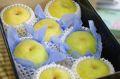秀玉梨(しゅうぎょくなし)通信販売 幻の青なし糖度約12度を販売取寄。中箱 約7玉~約9玉 山形・他産地