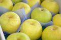 秀玉梨(しゅうぎょくなし)取寄販売 幻の青なし糖度約12度を通販で。約5kg 約10玉~約18玉 山形・他産地
