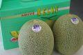飯岡タカミメロン通販 千葉産。貴味メロンを販売取寄!果物お中元ギフトに 2玉