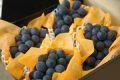 高尾(たかお)葡萄通信販売 山形産。種なし皮ごと食べられるぶどうを販売取寄。約2kg 約3房~約5房