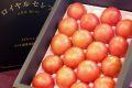 ロイヤルセレブ塩トマト販売 糖度10度以上フルーツとまと通販で取寄せ。約900g 約8玉~約16玉