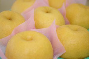 新興梨販売 糖度11度以上の和梨を通販で取寄  新潟産しんこう梨 秀品 約4玉~約7玉