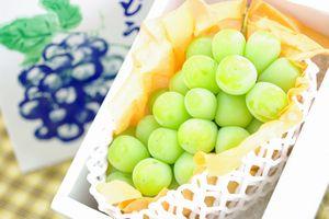 シャインマスカット葡萄通販 種なし皮ごと食べられるぶどうを販売取寄。1房 約550g