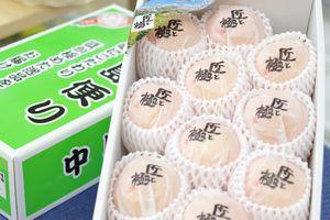匠と極み デリッシュネーブルオレンジ 愛媛県中島産  約2・5kg  約8玉~約12玉