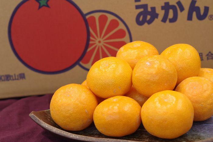田村みかん通販 和歌山有田みかん販売。田村出荷組合をお歳暮蜜柑に 5kg S~L