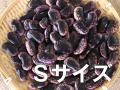 紫花豆 Sサイズ