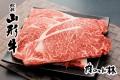 山形牛サーロインステーキ150×5 SUM2