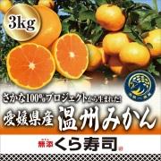 (12/5~12/22お届け!)さかな100%プロジェクトから生まれた!愛媛県産温州みかん 3kg