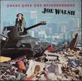 Joe Walsh ジョー・ウォルッシュ / There Goes The Neighborhood