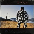 Pink Floyd ピンク・フロイド / Delicate Sound Of Thunder | US盤