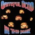 Grateful Dead グレイトフル・デッド / In The Dark イン・ザ・ダーク