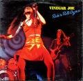 Vinegar Joeヴィネガー・ジョー / Rock 'N Roll Gypsies ロックンロール・ジプシー UK盤
