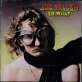Joe Walsh ジョー・ウォルシュ / So What UK盤