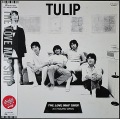 チューリップ Tulip / The Love Map Shop