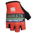 SPORTFUL BAHRAIN MERIDA TEAM GROVE (スポーツフル バーレーンメリダ チームグローブ) 2018