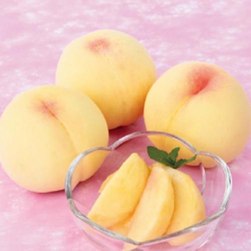 桃(モモ・もも)「清水白桃」の苗木を販売【花育通販】